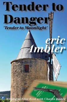 tender to danger jacket image